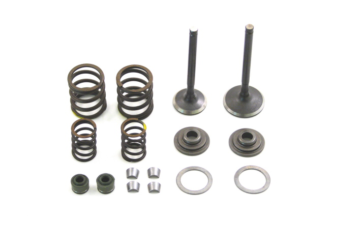 tbparts - zs race head v1 valve kit
