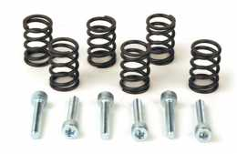 Heavy Duty Clutch Springs KLX/DRZ 110 EBC Brand1