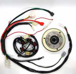 Thumpstar - Flywheel and Stator with Wiring Harness1