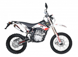Pitster Pro - XTR T4 250 LC1